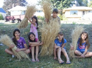 Kids Harvest